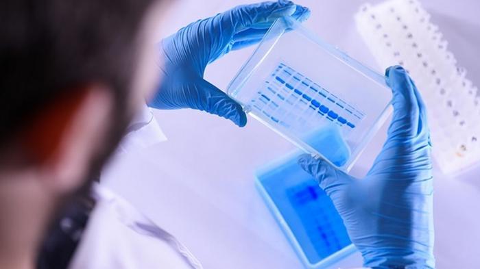 Названа болезнь, после которой появляется иммунитет к COVID-19