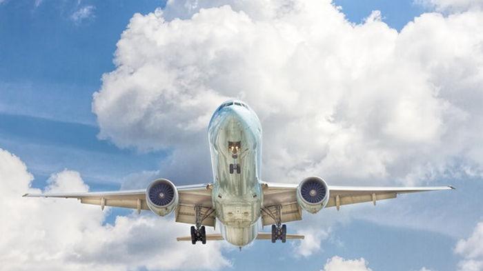 В Европе значительно сократилось число авиарейсов